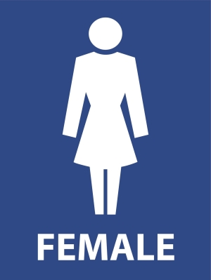 Symbolic Female Toilets - 600 x 450 - Metal